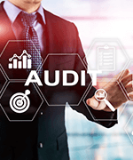 Audit and risk management