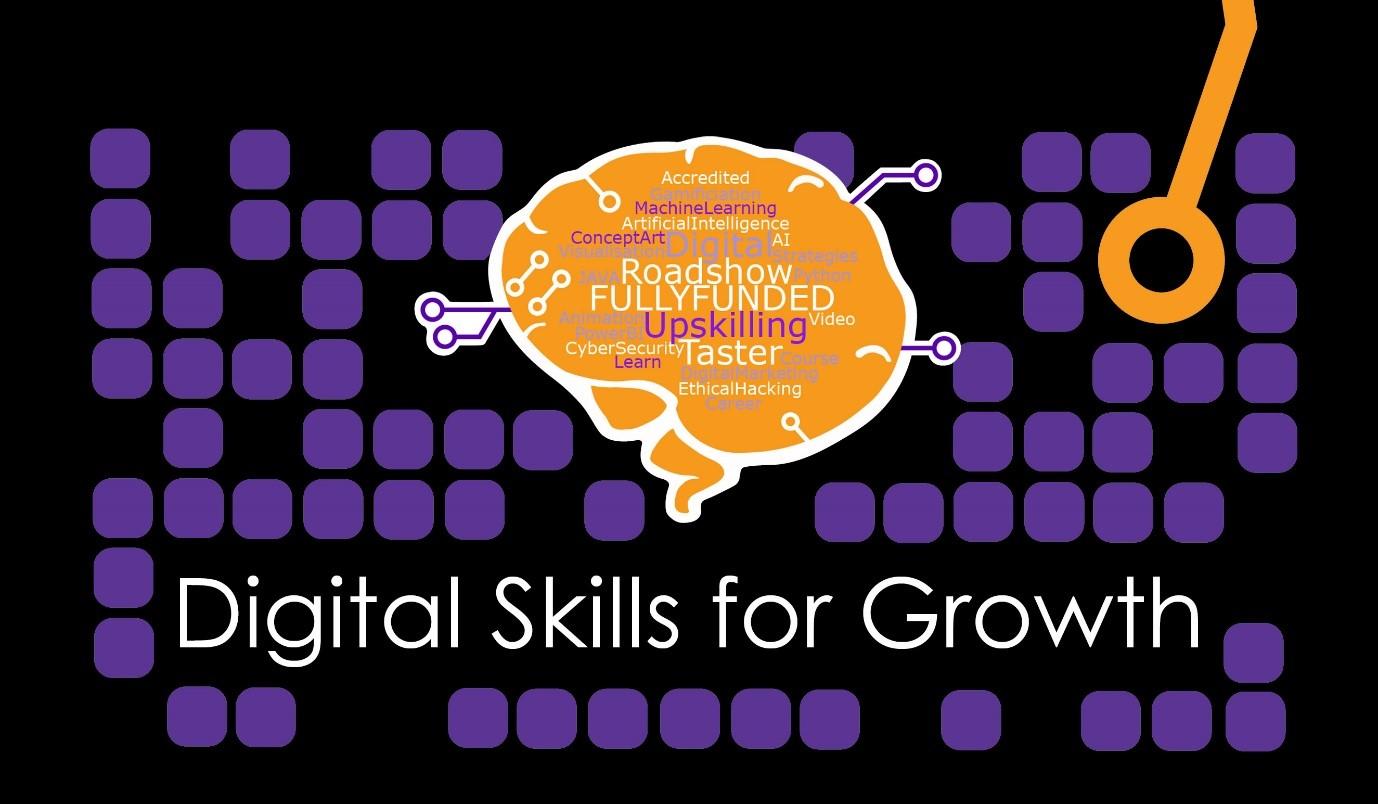 Digital Skills for Growth